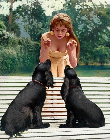Brigitte Bardot and her Dogs